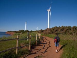 A Man Walks Along a Path Near Wind Turbines by Taylor S. Kennedy