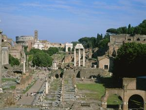 View of the Roman Forum by Taylor S. Kennedy