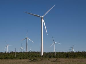 Wind Turbines Generating Electricity by Taylor S. Kennedy