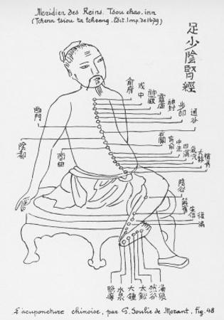 Acupuncture the Meridian of the Loins by Tchenn Tsiou Ta-tcheng