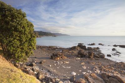 https://imgc.allpostersimages.com/img/posters/te-mata-beach-coromandel-peninsula-waikato-north-island-new-zealand-pacific_u-L-PQ8PHB0.jpg?p=0