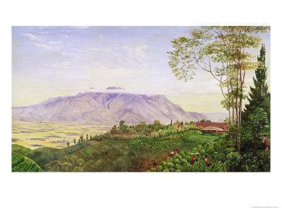 https://imgc.allpostersimages.com/img/posters/tea-gathering-in-mr-hoelle-s-plantation-at-garoet-java-circa-1875-board_u-L-O4PDE0.jpg?artPerspective=n