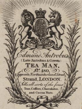 Tea Man, Edmund Antrobus, Trade Card