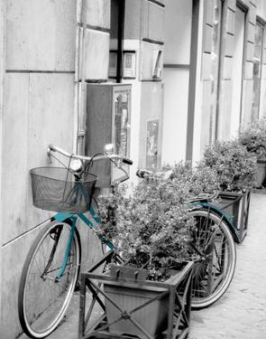 Teal Bike II