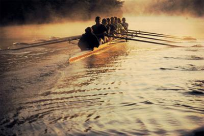Team Rowing Down the River