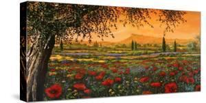 Pianura in fiore by Tebo Marzari