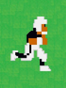 Tecmo Super Bo 8-bit Hall of Fame