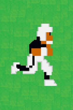 Tecmo Super Bo 8-bit Hall of Fame