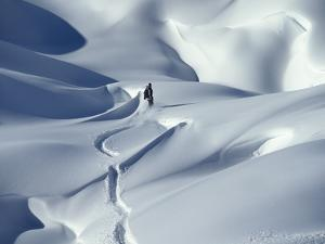 Snowboarder Riding in Powder Snow, Austria, Europe by Ted Levine