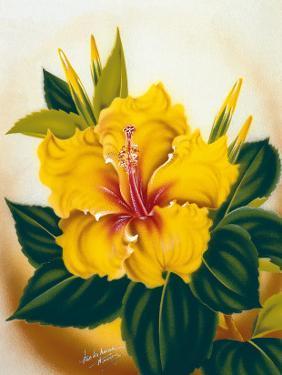 Hawaiian Yellow Hibiscus, c.1940s by Ted Mundorff