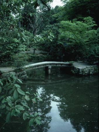 Old Stone Bridge in Garden
