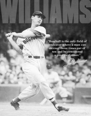 Ted Williams - Baseball