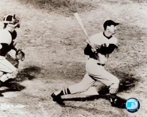 Ted Williams - Looking up