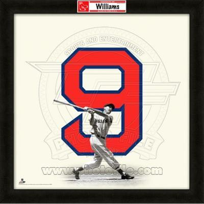 Ted Williams, Red Sox representation of the player's jersey