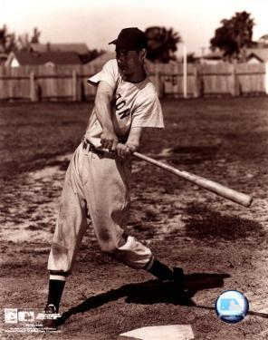 Ted Williams - Sepia swinging
