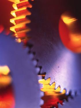 Cogs for Use In a Gearing System by Tek Image