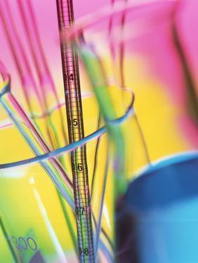 Glassware by Tek Image