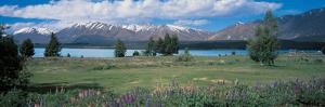 Tekapo Lake South Island New Zealand