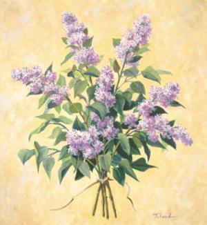 Lilac Season I by Telander