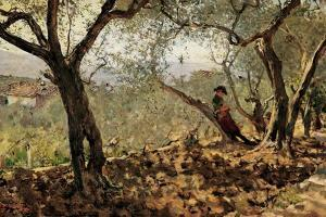 Among the Olive Trees by Telemaco Signorini