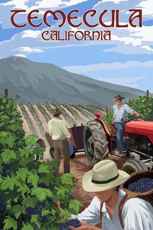https://imgc.allpostersimages.com/img/posters/temecula-california-wine-grape-harvest_u-L-Q1GQLWD0.jpg?p=0