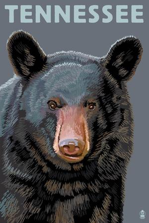 https://imgc.allpostersimages.com/img/posters/tennessee-black-bear-up-close_u-L-Q1GQT1P0.jpg?p=0