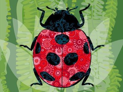 Lady Bug by Teofilo Olivieri