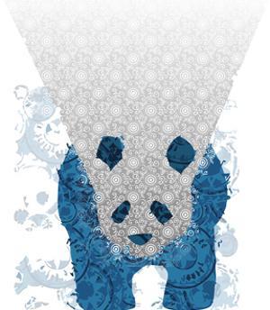 Panda by Teofilo Olivieri