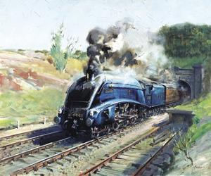 Mallard by Terence Cuneo