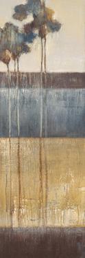 Palisade Palms II by Terri Burris