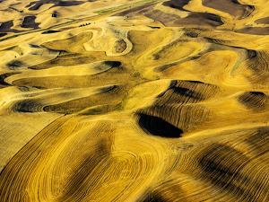 Aerial of harvest in the rolling hills of the Palouse by Terry Eggers