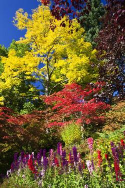 Autumn Color, Butchard Gardens, Victoria, British Columbia, Canada by Terry Eggers
