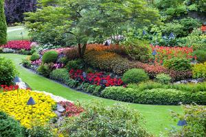 Butchart Gardens in Full Bloom, Victoria, British Columbia, Canada by Terry Eggers