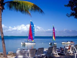 Catamarans, Florida Keys, Florida, USA by Terry Eggers