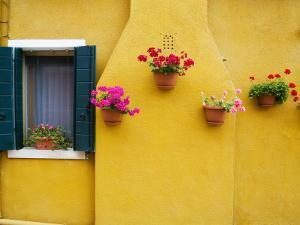 Colorful Burano City Homes, Italy by Terry Eggers