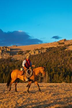 Cowboy Riding the Range by Terry Eggers
