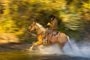 Cowboy Riding through River on a Horse by Terry Eggers