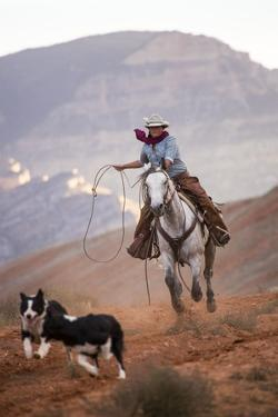 Cowgirl at Full Gallop with Cowdogs Leading Way by Terry Eggers