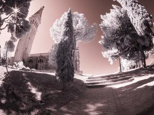 Croatia, Rovinj. Path leading to church by Terry Eggers