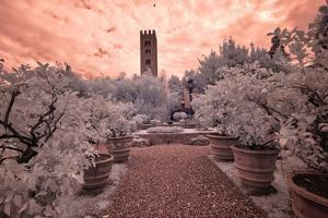 Italy, Lucca. Beautiful gardens and heavy sky above Palazzo Pfanner Of Lucca by Terry Eggers
