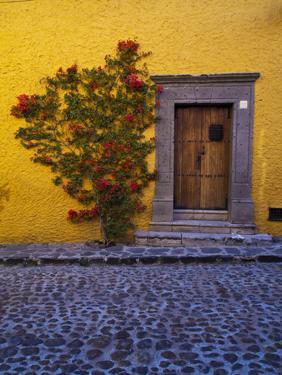 Mexico, San Miguel de Allende, Doorway with Flowering Bush by Terry Eggers