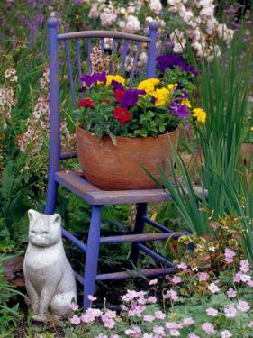 Mixed Flowers and Old Chair, Seattle, Washington, USA by Terry Eggers