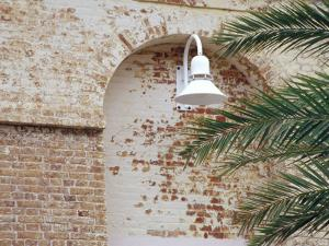 Old Brick Wall with Palm Trees, Key West, Florida Keys, Florida, USA by Terry Eggers