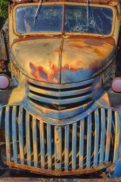 Old Chevy with Rust and Fading Paint by Terry Eggers