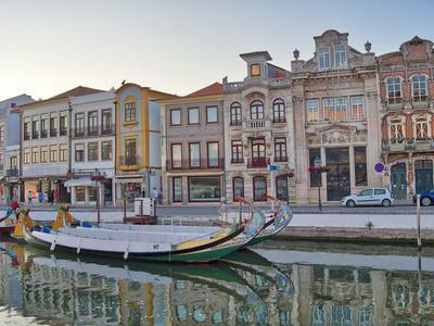 Portugal, Aveiro. Moliceiro boats along the main canal of Aveiro
