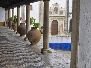 Portugal, Obidos. Ceramic pots adorning a building ledge. by Terry Eggers