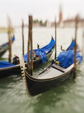 Selective Focus of Gondola in the Canals of Venice, Italy by Terry Eggers