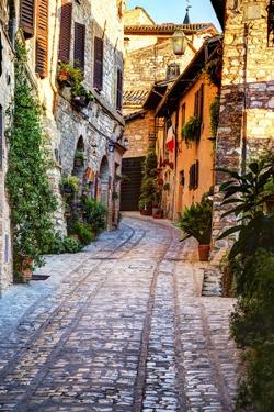 Street in Spello, Italy by Terry Eggers