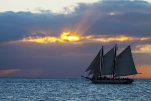 Sunset from Malory Square with Sailboat by Terry Eggers