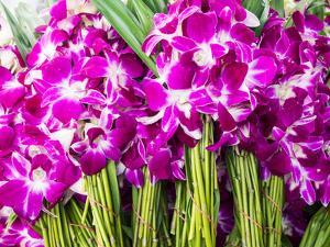Thailand, Bangkok Street Flower Market. Flowers ready for display. by Terry Eggers